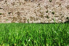 Spring Time for Istanbul April 2019, Grassy Field Until the Wall, Bright and Sunny Day. Great View royalty free stock photo