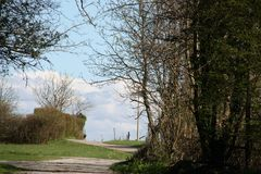 Spring time in karst. With lovely road trees getting green, white clouds on a blue sky Stock Images