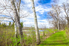 Spring Time at the Lake Royalty Free Stock Photography