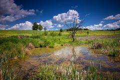 Spring time in polish countryside stock photo
