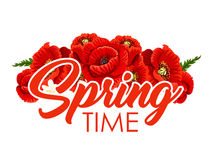 Spring time poster of vector poppy flowers bouquet Stock Photos