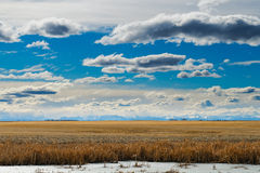 Spring time in the Prairies Stock Photo