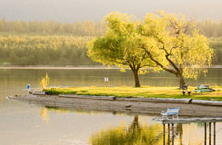 Spring Time Serenity Golden Hour at the Lake. Backlit trees and grass reflecting off water with bench dock and table Royalty Free Stock Image