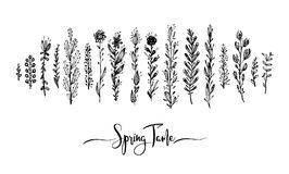 Spring time wording with hand drawn flowers, Set of black doodle elements, grass, leaves, flowers. Vector illustration. Great design element for congratulation Royalty Free Stock Photos