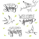 Spring time wording Royalty Free Stock Images