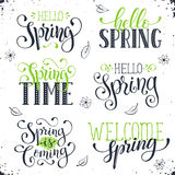 Spring time wording royalty free illustration