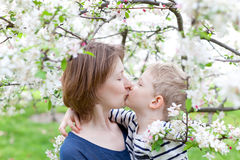 Spring time. Young mother kissing and hugging her son by the blooming tree royalty free stock photography
