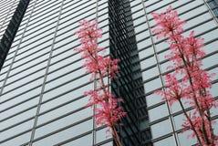 Spring in Tokyo Stock Photos
