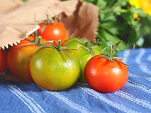 Spring tomatoes on table cloth. Italian tomatoes in a paper bag on blue table cloth with other greens and flowers in the background, selective focus Stock Images