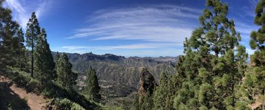 Spring on the top of the Island of Gran Canaria. View of the summit of the Island of Gran Canaria with colors and spring flowers, Spain royalty free stock images