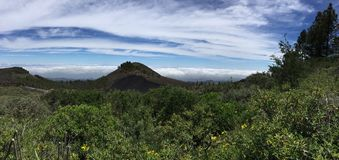 Spring on the top of the Island of Gran Canaria. View of the summit of the Island of Gran Canaria with colors and spring flowers, Spain stock photos