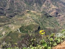 Spring on the top of the Island of Gran Canaria. View of the summit of the Island of Gran Canaria with colors and spring flowers, Spain stock image