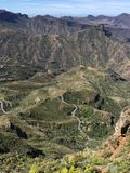 Spring on the top of the Island of Gran Canaria. View of the summit of the Island of Gran Canaria with colors and spring flowers, Spain royalty free stock photos