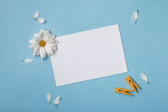Spring top view composition Royalty Free Stock Photos