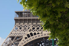 Detail of the Eiffel Tower in Spring Royalty Free Stock Photography