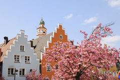 Spring in town Royalty Free Stock Photography