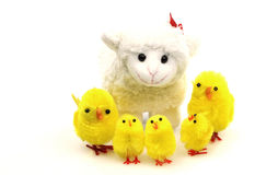 Spring toy Lamb with easter chicks. Toy Lamb with easter chicks on a white background royalty free stock photo