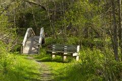 Spring Trail Bridge & Bench Royalty Free Stock Photos