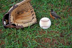Spring Training Royalty Free Stock Image
