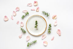 Spring trandy design with plate and blossom white background top view mockup Royalty Free Stock Images