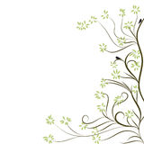 Spring tree Royalty Free Stock Photography