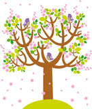 Spring tree. Illustration of spting cherry tree with birds Royalty Free Stock Photos