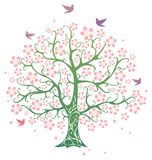 Spring tree. In bloom with birds Stock Photos