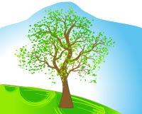 Spring tree stock illustration
