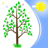 Spring tree. Stock Photography