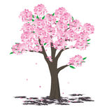 Spring tree. Beautiful blossom tree in spring Stock Photo