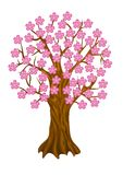Spring Tree, Stock Photography