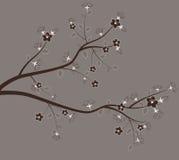 Spring tree. Stock Image
