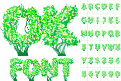 Spring tree alphabet Royalty Free Stock Photo