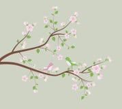 Spring tree with birds. Stock Photo