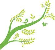 Spring tree with birds. Vector illustration Stock Photos