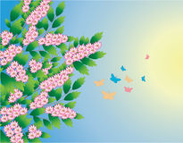 Spring tree with butterflies. The vector illustration contains the image of spring tree with butterflies Royalty Free Stock Photos