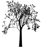 Spring tree with leaf shoots. Silhouette of tree with cluster of leaf shoots stock illustration