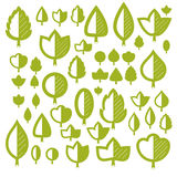 Spring tree leaves, botany and eco flat images. Vector illustrat Stock Photos