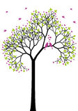 Spring tree with love birds, vector Stock Images