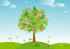 Spring tree,vector. Spring tree in the day ,vector illustration Royalty Free Stock Images