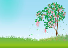 Spring tree.Vector. Spring tree in the day. vector illustration royalty free illustration