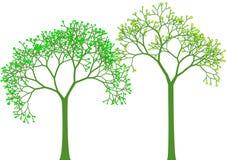 Spring trees,  Royalty Free Stock Photos