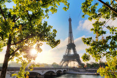Spring trees Eiffel morning Royalty Free Stock Photos