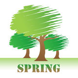 Spring Trees Indicates Seasons Woods And Warm. Spring Trees Showing Treetops Nature And Reforestation Stock Image