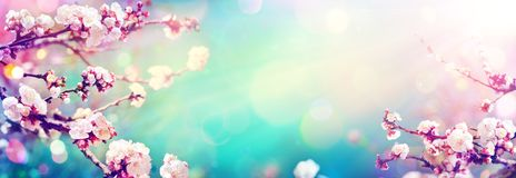 Spring With Trend Colors Palette - Blooming In Spring. Vintage Effect stock images