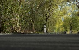 Spring trip in a tree avenue with car. Spring trip in a tree avenue . There is a car in the background stock photos
