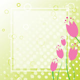 Spring Tulip Background. Eps10 tulip background frame for greeting card Stock Image