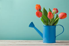 Spring tulip flower bouquet with copy space Stock Photo