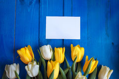Spring tulip flowers, gift box and paper card on blue wooden table from above in flat lay style. Stock Photo
