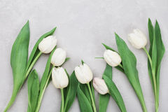Spring tulip flowers on gray stone table top view in flat lay style. Greeting for Womens or Mothers Day. Stock Photo